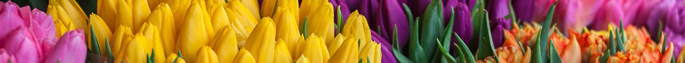 Nazwa dla kwiaciarni